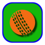 icon Guess Cricket - Multiplayer