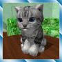 icon Cute Pocket Cat 3D - Part 2