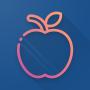 icon iOS Widgets