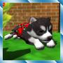 icon Cute Pocket Puppy 3D