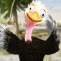 icon Talking Ostrich