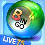 icon kr.co.tk.game.bingo75.google