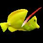 icon Swipe To Cut Swimming Fish