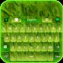 icon Green Nature Keyboard