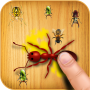 icon Ant Smasher Free Game