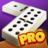 icon Dominoes 7